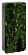 Tyler Baby Pinecones 2 Portable Battery Charger
