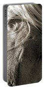 Unbrushed Mane Portable Battery Charger
