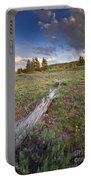 Under Stormy Skies Portable Battery Charger
