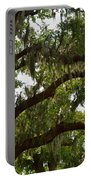 Under The Live Oak Tree Portable Battery Charger