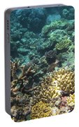 Underwater Color Portable Battery Charger