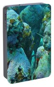 Underwater Tourists Portable Battery Charger