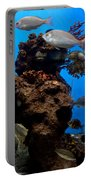Underwater View Portable Battery Charger
