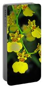 unnamed hybrid Orchid  Portable Battery Charger