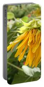 Unripe Sunflowers Portable Battery Charger