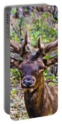 Up Close And Personal With An Elk Portable Battery Charger