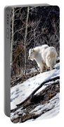 Up On The Mountain Top Portable Battery Charger