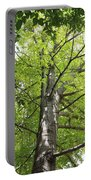 Up The Oak Tree Portable Battery Charger
