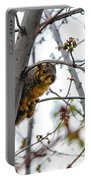 Up The Tree Portable Battery Charger by Robert Bales