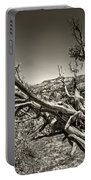 Uprooted - Bryce Canyon Sepia Portable Battery Charger