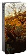 Usa, Arizona, Sonoran Desert, Ocotillo Portable Battery Charger
