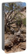 Utah Tree Portable Battery Charger