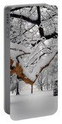 Valley Forge Winter 9817 Portable Battery Charger