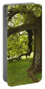 Valley Oak Portable Battery Charger