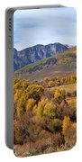 Valley Of Gold Portable Battery Charger