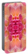 Valley Porcupine Abstract Portable Battery Charger