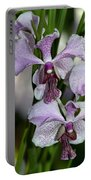 Vanda Emma Van Derventer 6906 Portable Battery Charger