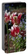 Variegated Tulips Portable Battery Charger