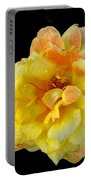 Variegated Yellow Rose Portable Battery Charger