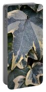 Varigated Ivy Leaves Portable Battery Charger