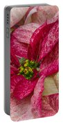 Varigated Poinsettia Portable Battery Charger