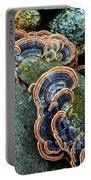 Velvet Wild Mushrooms  Portable Battery Charger