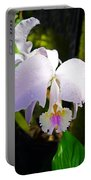 Veraflora Orchid  Portable Battery Charger