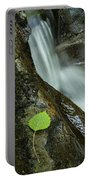 Vermont Aspen Leaf Waterfall Camels Hump Duxbury Portable Battery Charger