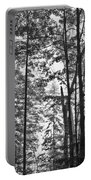 Vermont Forest Sunrise Ricker Pond Black And White Portable Battery Charger