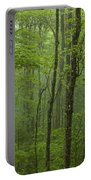 Vermont Mount Mansfield Green Forest Fog Panorama Portable Battery Charger
