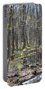 Vernal Pool 1 Portable Battery Charger