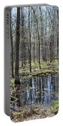 Vernal Pool 2 Portable Battery Charger