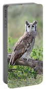 Verreauxs Eagle-owl Bubo Lacteus Portable Battery Charger