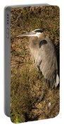 Vertical Heron Basking In The Morning Sun Portable Battery Charger