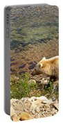 Very Light-colored Grizzly Bear In Moraine River In Katmai Nnp-ak Portable Battery Charger