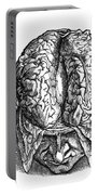Vesalius: Brain, 1543 Portable Battery Charger