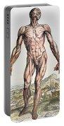 Vesalius: Muscles 01 Portable Battery Charger