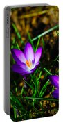 Vibrant Crocuses Portable Battery Charger by Karol Livote