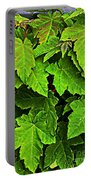 Vibrant Young Maples - Acer Portable Battery Charger