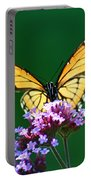 Viceroy Butterfly Square Portable Battery Charger
