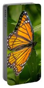 Viceroy Portable Battery Charger