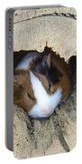 Vicious Animal Sleeping Portable Battery Charger