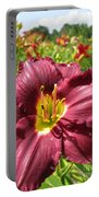 Viette's Daylily. Dark Purple 01 Portable Battery Charger
