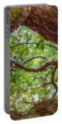 View Through Angel Oak Tree Portable Battery Charger