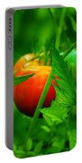 Vine Ripened Portable Battery Charger