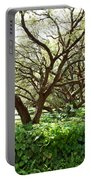 Vines And Oaks Portable Battery Charger