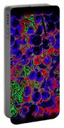 Vineyard Abstract Portable Battery Charger