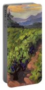 Vineyard At Dentelles Portable Battery Charger
