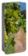 Vineyard Grapes Portable Battery Charger