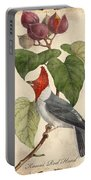 Vintage Bird Study-d Portable Battery Charger